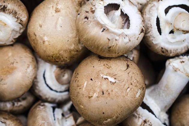 Neu im Supermarkt: Vitamin D-Pilze – was sagt Stiftung Warentest dazu?