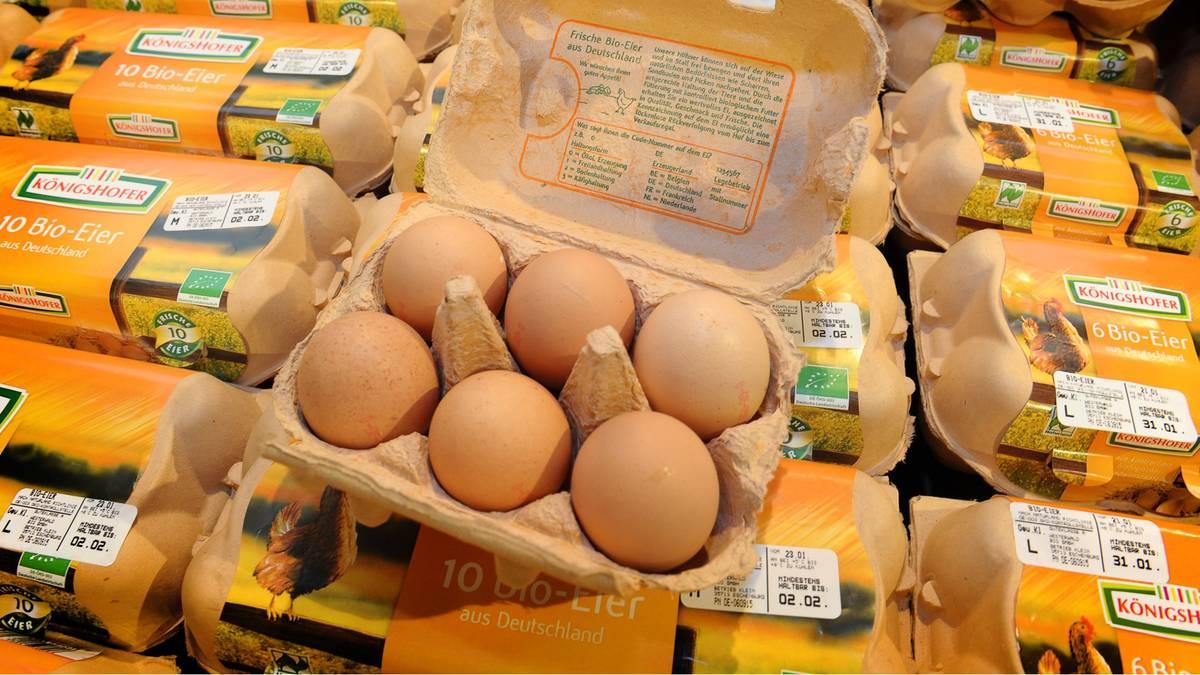Gefährliche Zweitverwertung: Warum Eierkartons sofort in den Müll gehören