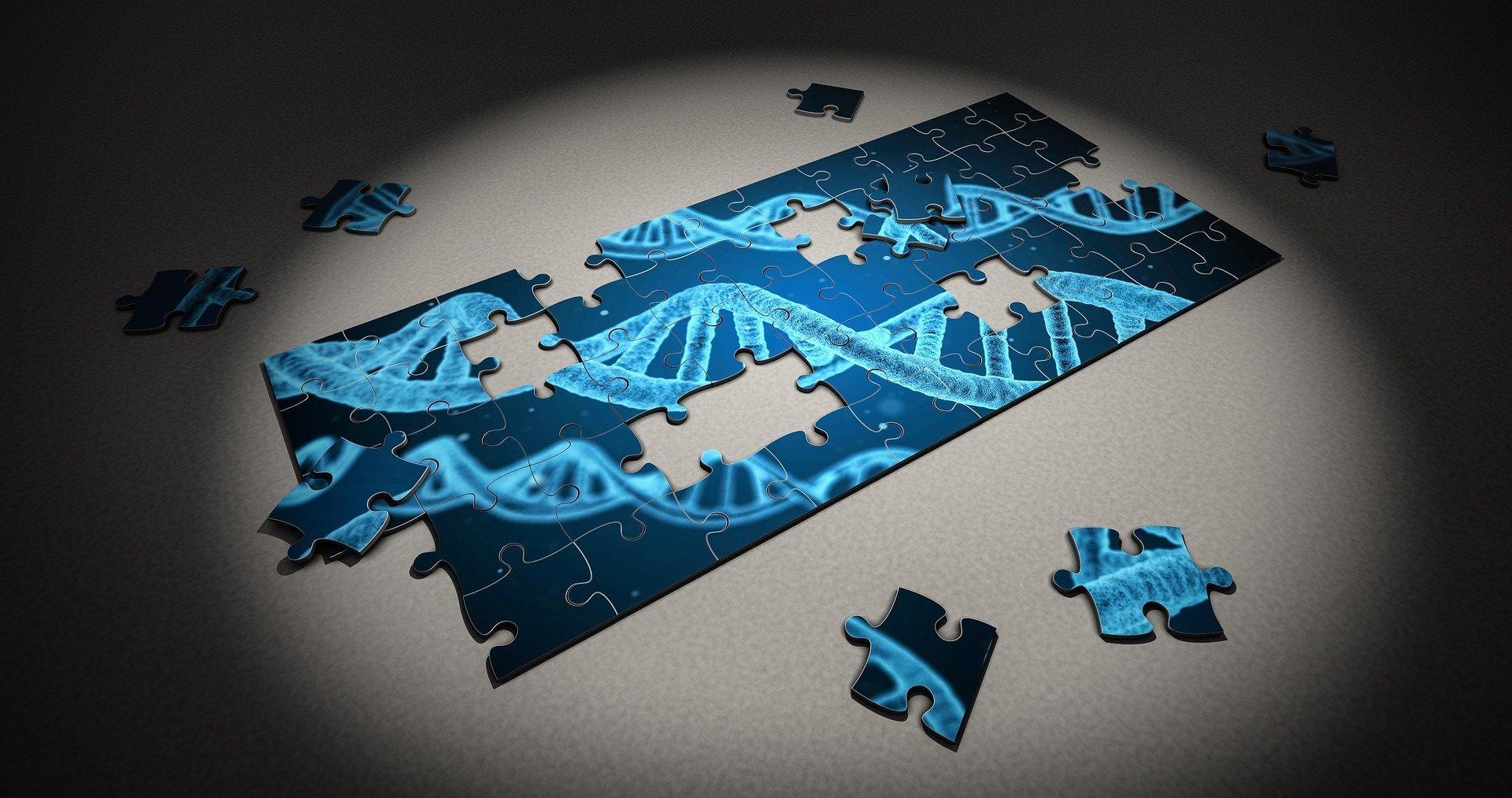 Gene in kolorektalen Krebs verursacht auch Brustkrebs