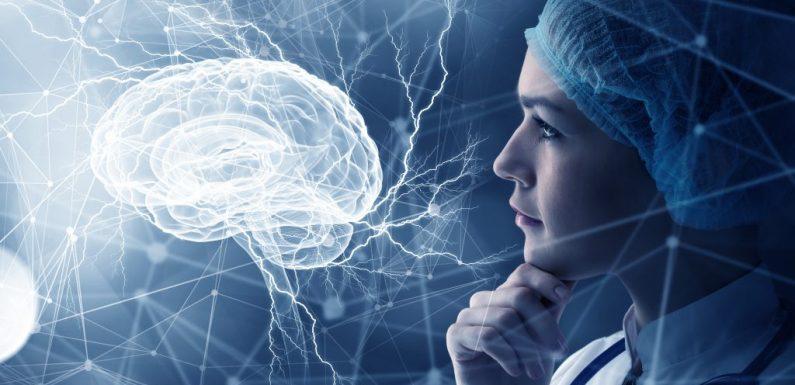 Studie: Unser Lebensstil wird im Gehirn wie aus einem Buch abgelesen