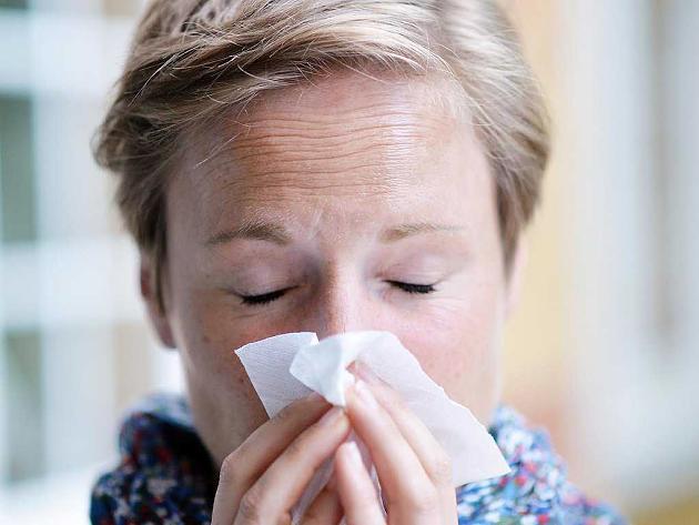 Professor erklärt: Mit dem 24-Stunden-Notfall-Plan werden Sie eine Erkältung los