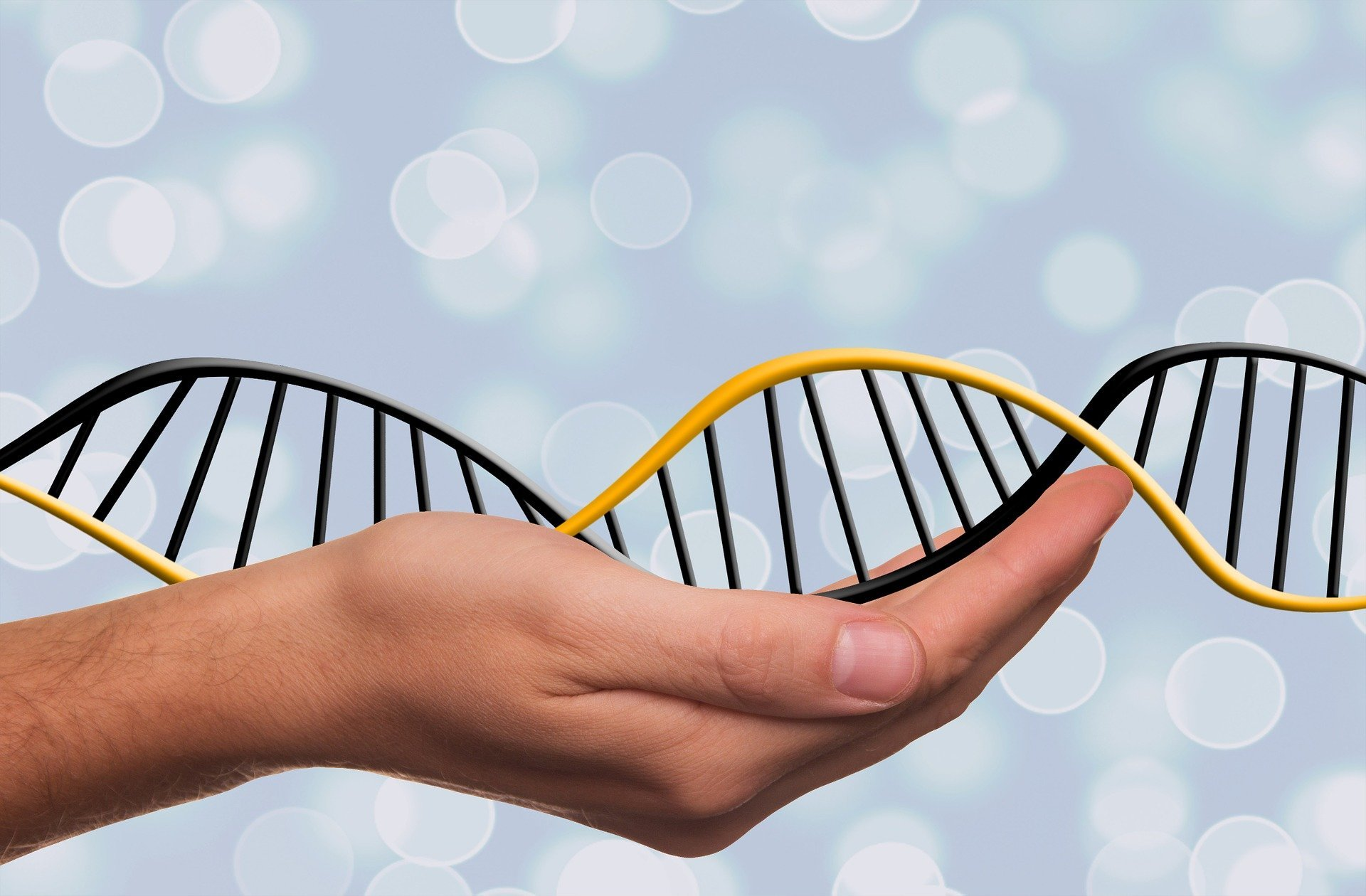 """In der Pränataldiagnostik, """"Genomik"""" manchmal sieht, was genetische tests können nicht"""