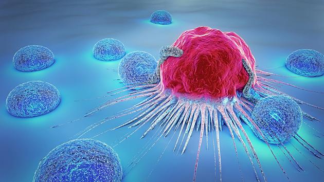 Krebs stoppen, bevor er ausbricht: Forscher wissen jetzt, wie das gehen kann