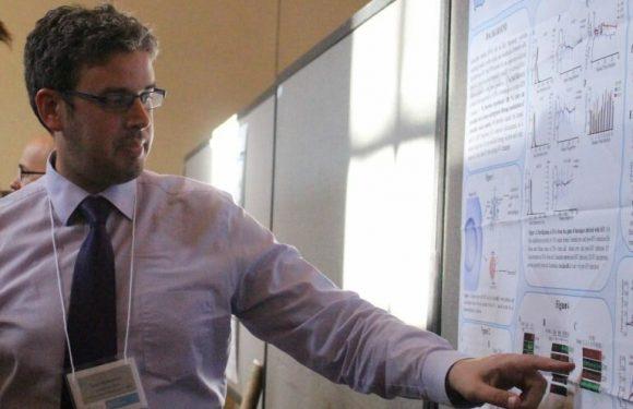"""Virus im Zusammenhang mit Krebs übernimmt """"die cellular-mail"""" zu ändern tumor-Umgebung"""
