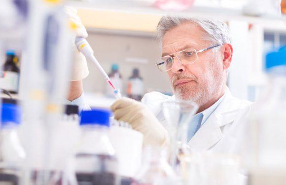 HIV: Patient nach Stammzelltransplantation virenfrei