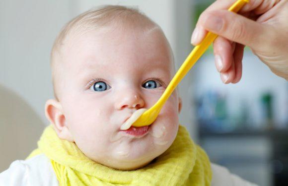 Wichtiger Rückruf bei Drogerie-Markt dm: Schimmelpilz-Giftstoff in Babynahrung gefunden