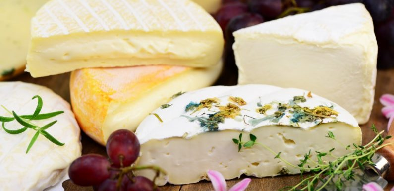 Gesundheitsschädliche Keimerreger gefunden: Erneuter Käse-Rückruf wegen Kolibakterien eingeleitet