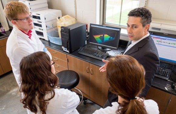 Forscher entwickeln erste gezielte funktionelle Inhibitoren der Erdnuss-Allergene