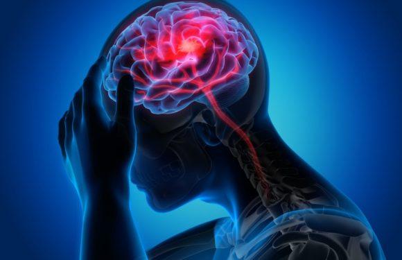 Schlaganfall – Anzeichen, Ursachen und Therapie