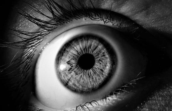 Die Natur könnte die Antwort für Blindheit, die durch diabetes verursacht wird, sagen Experten