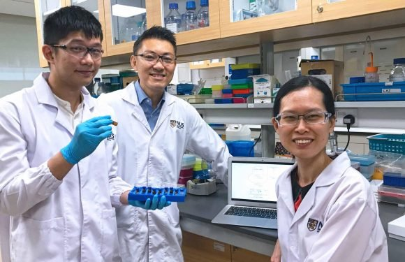 Neue Biomarker im Zusammenhang mit 'chemobrain' gefunden