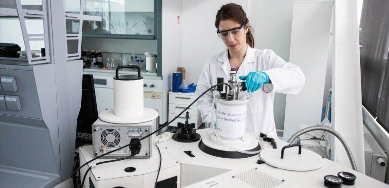 Wissenschaftler erstellen Bausteine für anti-Krebs-Medizin