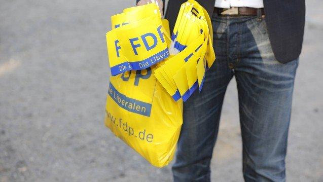 FDP Brandenburg will die Importförderklausel streichen