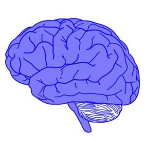 """Studie identifiziert, die unsere """"innere taschendieb'"""