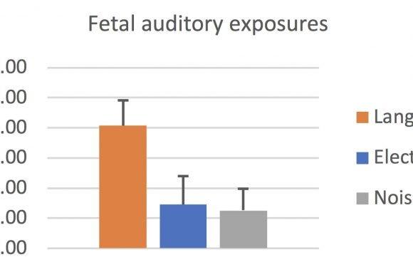 Wie viel Sprache sind ungeborene Kinder, ausgesetzt in der Gebärmutter?