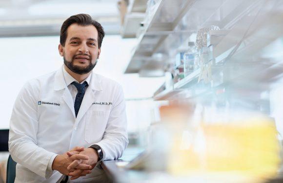 Die Verwendung von künstlicher Intelligenz zu liefern personalisierte Strahlentherapie