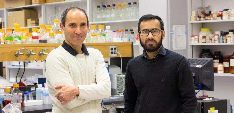 Die überraschende Rolle von fibrinogen spielt bei der Regulierung der Reaktion des Körpers auf Krankheit