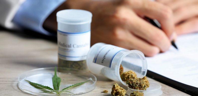 Abnehmen: Cannabis als neue Geheimwaffe gegen Übergewicht
