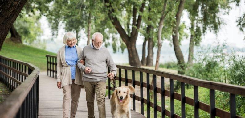 Diese Schrittanzahl pro Tag sorgt schon für eine höhere Lebenserwartung