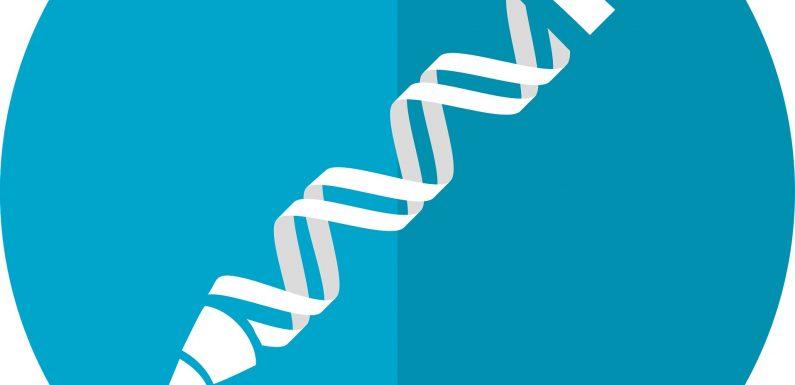 Erste CRISPR Studie im Körper zu beginnen, in UNS