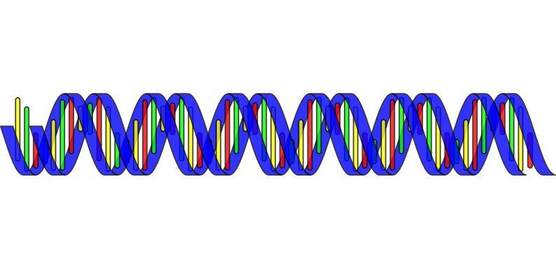 Die 'virale' Agenten von MS, ALS und Schizophrenie begraben in unserem Genom?