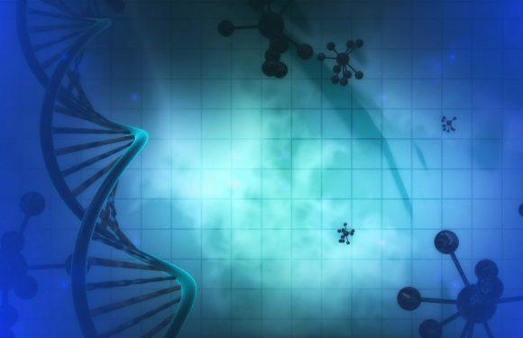 Gestört genetische Uhren, die in der Schizophrenie-betroffenen Gehirnen zeigen Hinweise auf die Krankheit