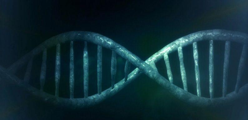 Die Forscher machen den Fall für dominant-negativen Effekt mit TP53-Mutationen
