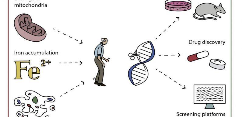 Wissenschaftler erforschen genetische engineering zur Behandlung der Parkinson-Krankheit