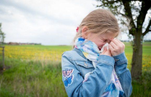 Wie Sie wissen, wenn Ihr Kind hat Heuschnupfen und wie sollte man es behandeln