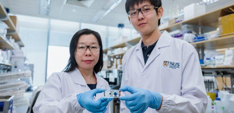 Erfindung ermöglicht weniger invasive Biopsien und informativer