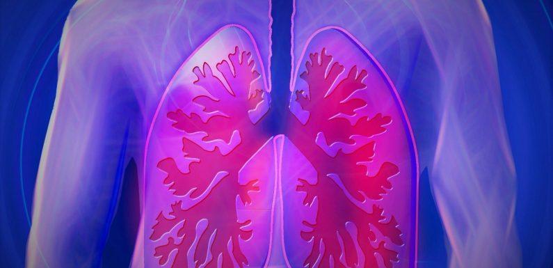 Schottische Studie zeigt, dass die Autoantikörper-test, gefolgt von CT-Bildgebung kann die Verringerung der Lunge-Krebs-Sterblichkeit