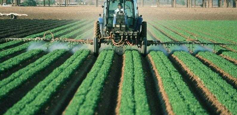 Maßstab Suizid durch Pestizid-Vergiftungen aufgedeckt
