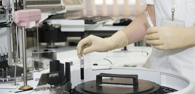 Studie findet rassische Unterschiede in der Behandlung von Patienten mit Multiplem Myelom