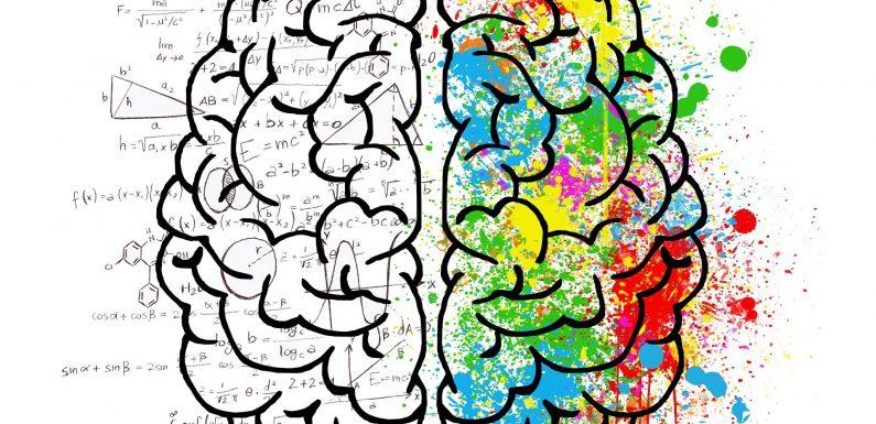 Forscher entdecken den Ursprung und die evolution des berühmten Konzept des Gehirns