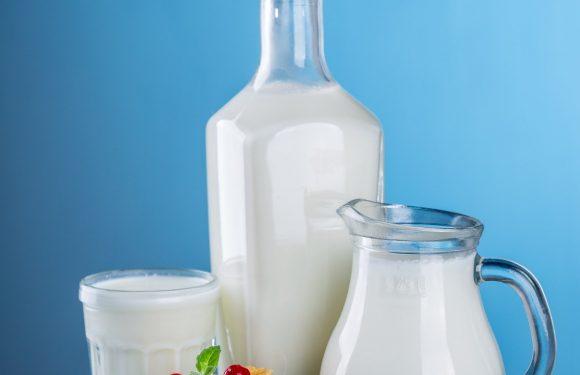 Studie: Kinder, die tranken Vollmilch hatte geringeres Risiko, übergewichtig oder fettleibig