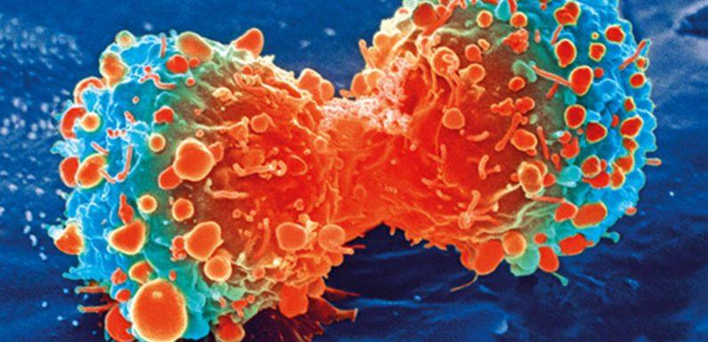 Studie zeigt die Hemmung der gen-hilft widerstände überwinden, um die Immuntherapie