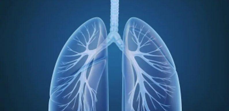 CDC: Alle 50 Staaten nun die Meldung von Fällen von schweren vaping-verbunden mit Verletzungen der Lunge