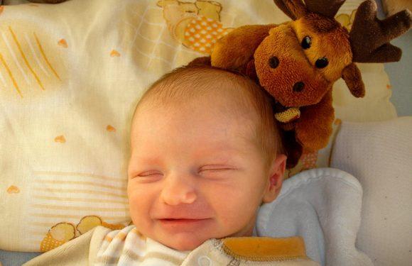 Modell Tastköpfe mögliche Behandlungen für Neugeborenen-Infektionen, eine häufige Ursache von Kindstod