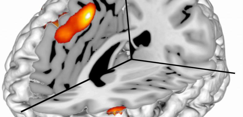 Berechnet überraschung führt zu bahnbrechende Entdeckung in der kognitiven Steuerung der Forschung