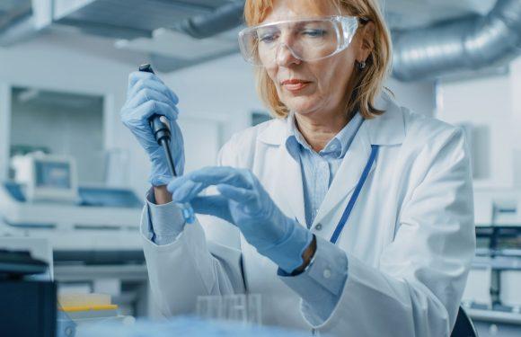 Nanopartikel fressen Plaques, die Herzinfarkte verursachen