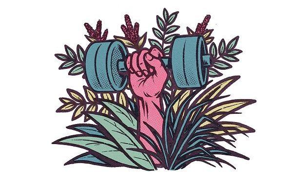Power für Muskeln und Immunsystem: So essen Sie sich mit Eiweiß fit und gesund