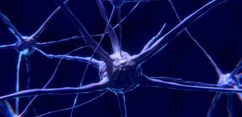 Entzündung des Gehirns in Veteranen mit Golfkrieg Krankheit