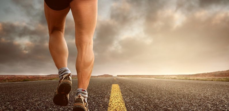 Wearable Tracker Schätzung fitness-Level, ohne high-intensity übung