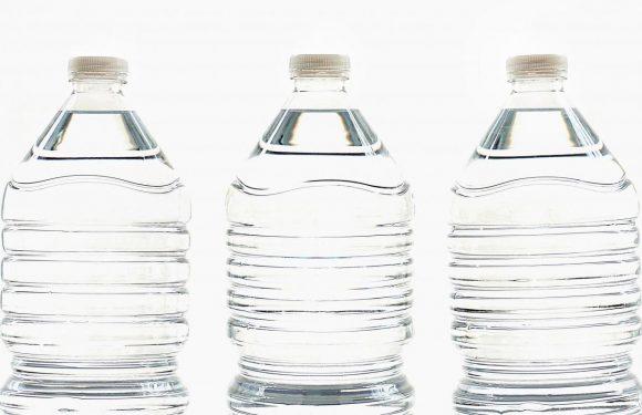 BPA-alternative bisphenol-S könnte sich negativ auf Mutter Plazenta und die Entwicklung des Babys Gehirn