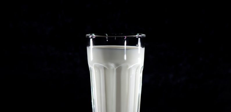 Neue Studie ordnet die Aufnahme von Milch-Milch mit erhöhtem Risiko für Brustkrebs