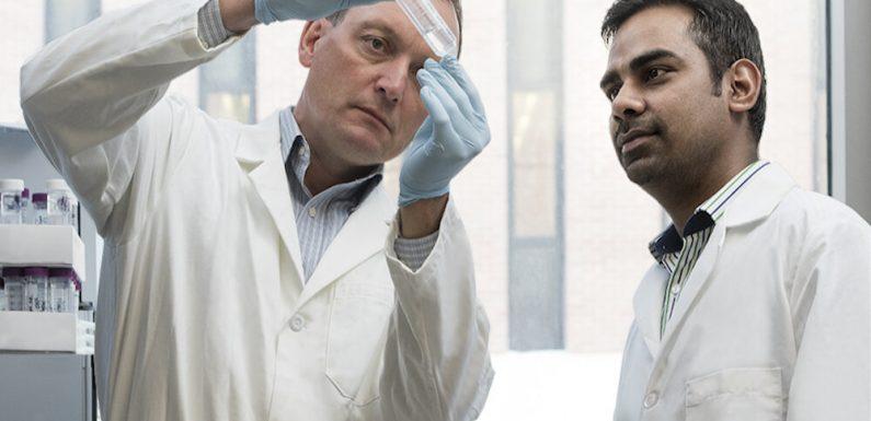 Einblick in den Mechanismus der Behandlung-resistenten Gonorrhoe-sets die Bühne für neue Antibiotika
