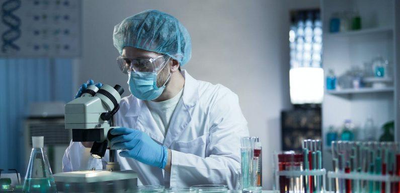 Hier ist, wie Wissenschaftler wissen das coronavirus kam von Fledermäusen und war nicht in einem Labor