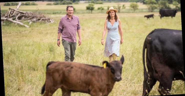 """""""Die Kuh ist per se kein Klimakiller, sie ist weder gut noch schlecht"""""""