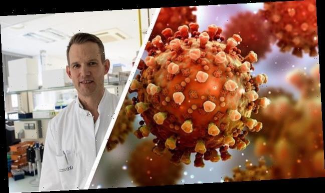 Virologe warnt vor Panik: Dürfen nicht schreckstarr auf Infektionszahlen schauen