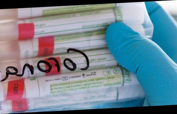 RKI meldet Höchstwert von 487 Corona-Todesfälle binnen 24 Stunden, außerdem 17.270 Neuinfektionen